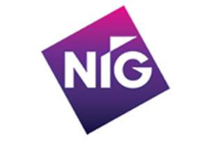 NIG  - Logo